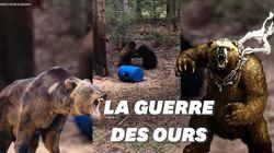Un chasseur filme deux ourses se battant pour défendre leur