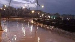 Inondations à Constantine : une personne emportée par les crues de oued
