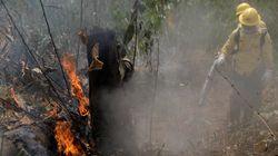Bolsonaro decreta la suspensión de quemas para frenar los incendios en la