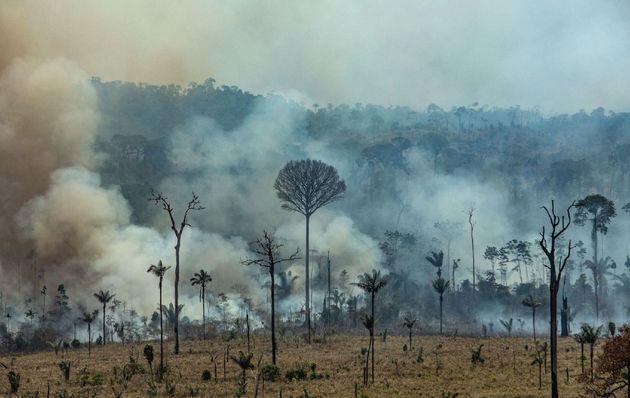 El humo inunda la Floresta Nacional do Jamanxim en el estado de Pará, el 23 de agosto de