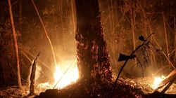 Brasil despliega 44.000 militares para luchar contra los