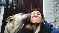 Selon une nouvelle étude, le chien serait le meilleur ami du