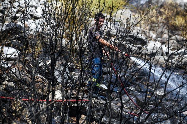 Φωτιά σε δασική έκταση στο Πεταλίδι