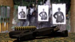 PL das armas pode abastecer organizações criminosas, alerta Sou da