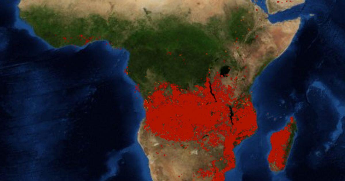 Carte Satellite Afrique Du Sud.Incendies De L Amazonie Pourquoi Les Feux De Foret En