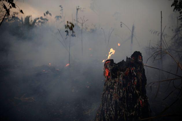 «Επίθεση» στην εθνική κυριαρχία η βοήθεια της G7 για τον Αμαζόνιο, λέει ο