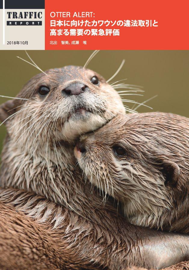 TRAFFICの報告書「Otter Alert: