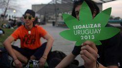 ¿Sabes a cuánto venderá Uruguay (legalmente) el gramo de