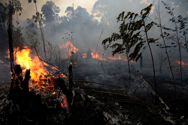 A fire burns trees and brush along the road to Jacunda National Forest, near the city of Porto Velho in the Vila Nova Samuel region which is part of Brazil's Amazon, Monday, Aug. 26, 2019. The Group of Seven nations on Monday pledged tens of millions of dollars to help Amazon countries fight raging wildfires, even as Brazilian President Jair Bolsonaro accused rich countries of treating the region like a