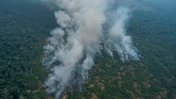 Brazil To Reject $20 Million Wildfire Aid From G-7 Unless France