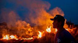 Le foto più virali sui roghi in Amazzonia sono fake (e ci casca anche