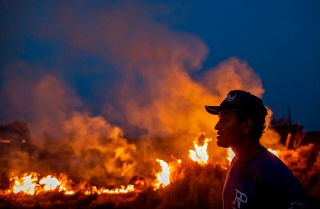 A labourer stares at a fire that spread to the farm he work on next to a highway in Nova Santa Helena...