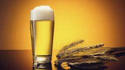 Drinking Beer Can Ease The Climate Crisis (No, Not In THAT