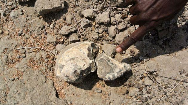 Κρανίο 3,8 εκατ. ετών ανακαλύφθηκε στην