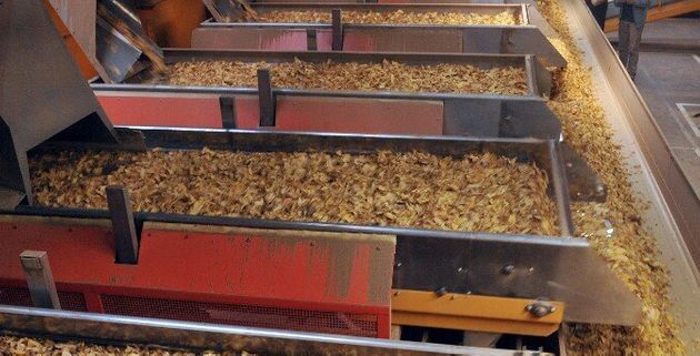 En Dordogne, la dernière usine de tabac de France va