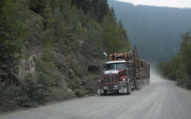 BRITISH COLUMBIA, CANADA - AUGUST 20: A logging truck drives down a rural roadon August 20, 2018 in British...