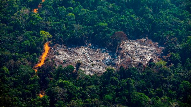 Aerial view of deforestation in the Menkragnoti Indigenous Territory in Altamira, Para state, Brazil, in the Amazon basin, on August 28, 2019. (Photo by Joao LAET / AFP)        (Photo credit should read JOAO LAET/AFP/Getty Images)