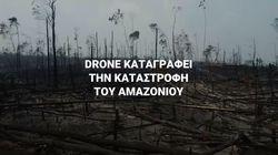 Η καταστροφή του Αμαζονίου από