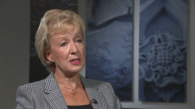Business Secretary and former leader of the House of Commons Andrea Leadsom says it is 'not unusual'...