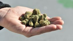 B.C. Trails All Provinces Except 1 In Legal Weed Sales Across