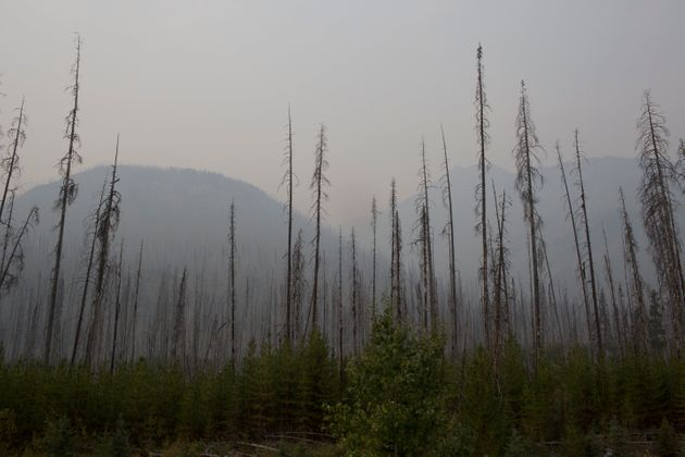 Smoke from wildfires fills the air in British Columbia's Kootenay National Park on Aug. 25, 2018. The...