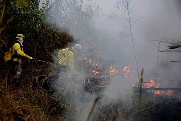 Timberland, Vans και North Face σταματούν την προμήθεια από τη Βραζιλία λόγω