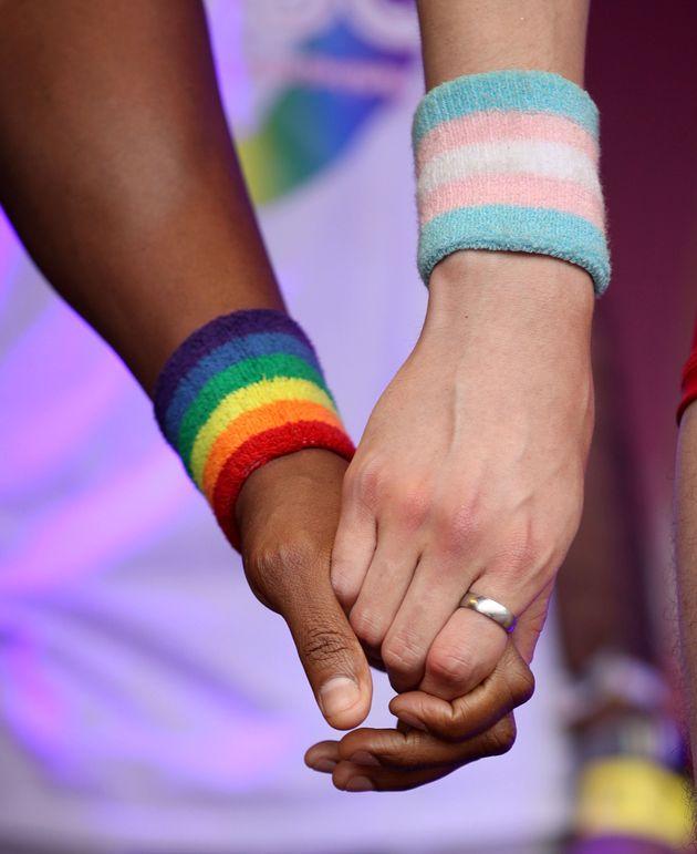 Le «gène gai» n'existe pas, selon la plus grande étude ADN jamais