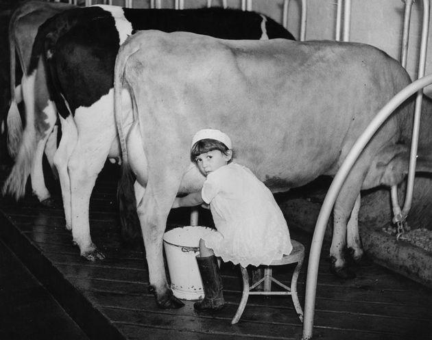 En 1936, la jeune Vera apprend à traire les vaches. En France, elle aurait sans doute fait partie...