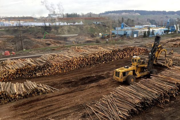 The West Fraser sawmill in Quesnel, B.C. April 26, 2017. The company had stockpiled logs because the...