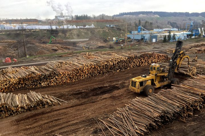 The West Fraser sawmill in Quesnel, B.C. April 26, 2017. The company had stockpiled logs because the forest experienced its annual weeks-long thaw, where the ground was too wet to operate logging machinery.