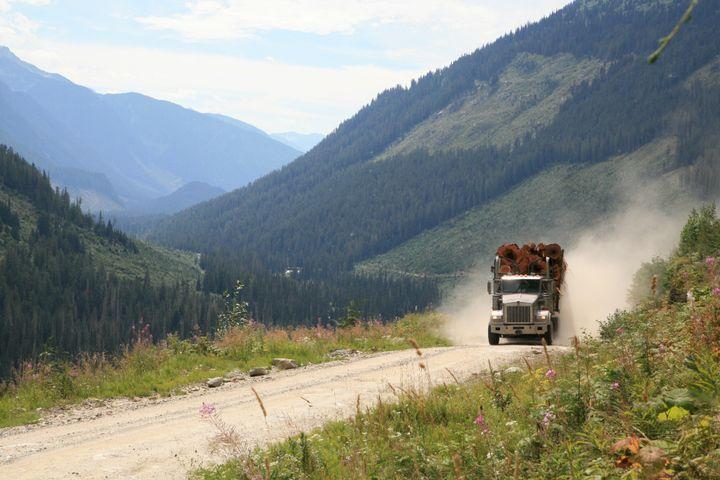 Cedar logs being hauled northeast of Kamloops, B.C.