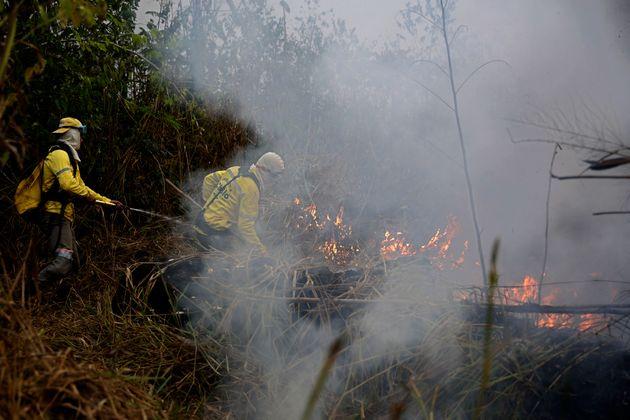 Des pompiers tentent d'éteindre une partie de l'incendie dans le parc national de Jacunda, au...