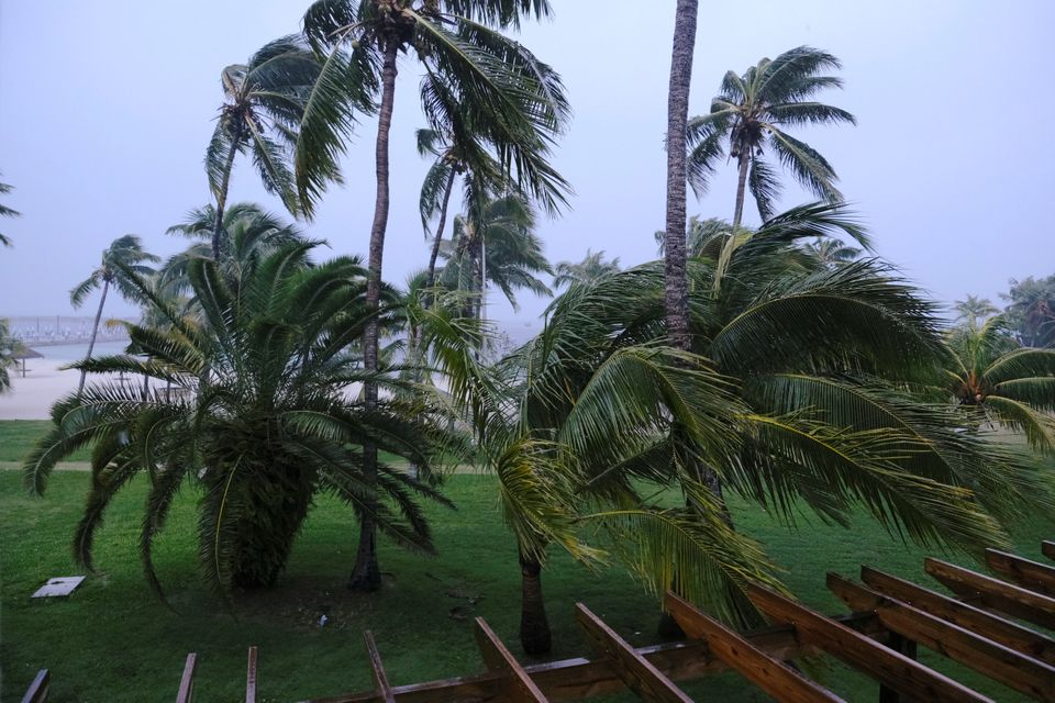 Palm trees blow in the wind during the arrival of Hurricane Dorian in Marsh Harbour, the Great Abaco...