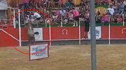 Una veintena de heridos al escapar un toro de un