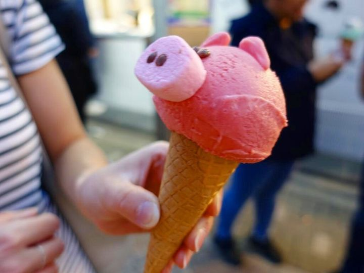 Animal-shaped delights at Eiswelt Gelato.