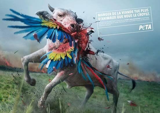 La dernière affiche de campagne de la PETA.