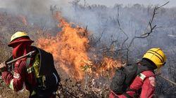 Incendies en Amazonie: la France envoie 46 experts en