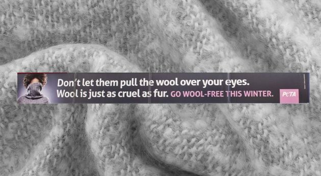 Peta Ad Banned for Wool Is Just As Cruel As Fur Claim