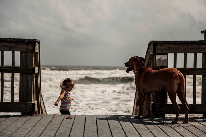 Bea Tyson, 2, hangs out with her dog, Navy, at the beach in St. Augustine, Florida, on Tuesday.