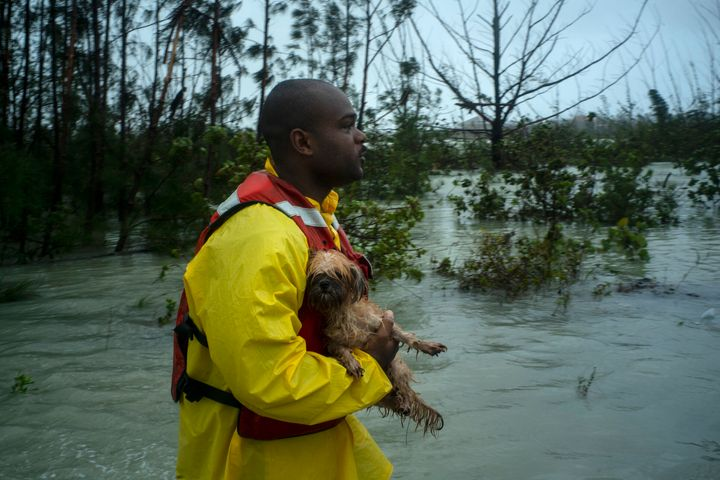A volunteer looks for the owner of a dog he rescued from the rising waters of Hurricane Dorian, on a flooded road near the Ca