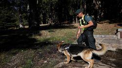 Encuentran el cadáver de una mujer durante las labores de búsqueda de Blanca Fernández Ochoa, informa La