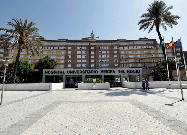 La Junta de Andalucía confirma un sexto aborto por el brote de