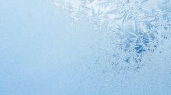 '얼었어' 시리즈가 온라인에서