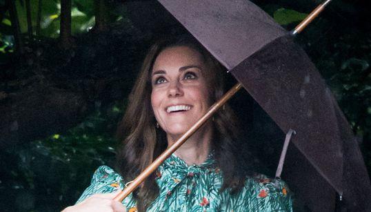 케이트 미들턴 36세 생일 기념으로 뽑은 36장의
