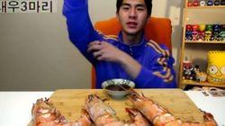 '고작' 새우 3마리를 먹는 먹방이
