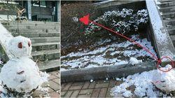 서울대 '눈사람 게이트'가 귀엽게