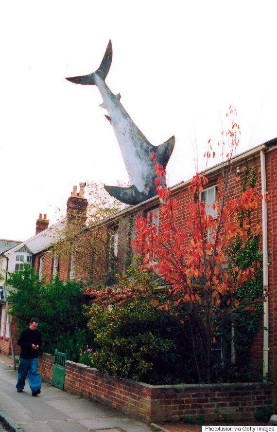 영국 어느 집 지붕에 30년 간 상어 조형물이 박혀있었던