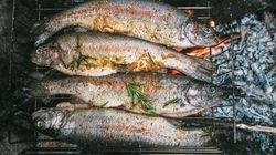 Vegana denuncia i vicini perché cucinano pesce sul barbecue. E loro organizzano una