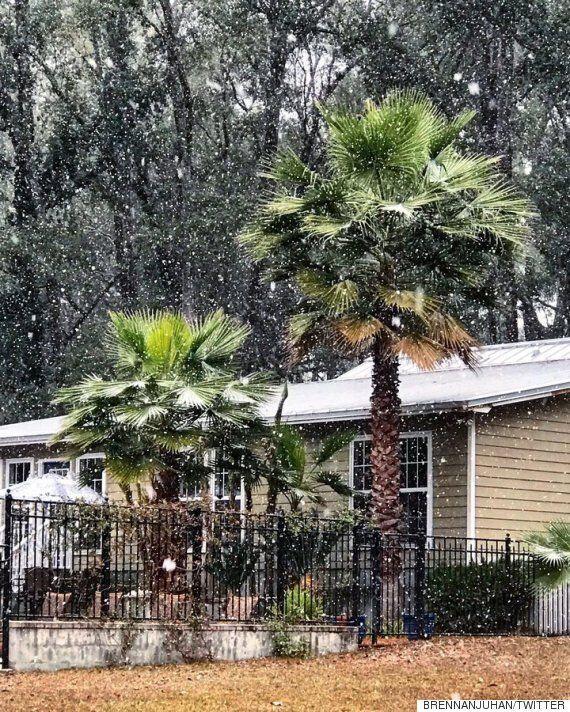 플로리다에 눈이 오자 사람들이 기뻐하고
