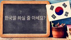 영어 원어민이 가장 배우기 힘든 언어는